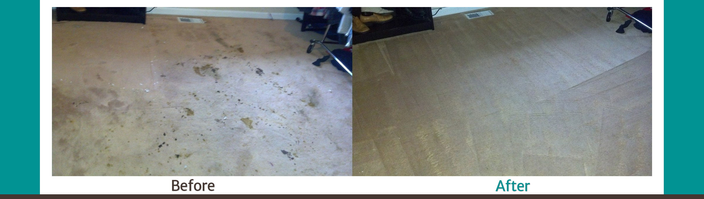 Carpet Cleaning Vancouver Wa 1000 5 Star Reviews Web
