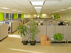 Office Carpet Cleaning in Vancouver WA & Camas WA by Top Notch Carpet Cleaning