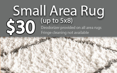 small rug price
