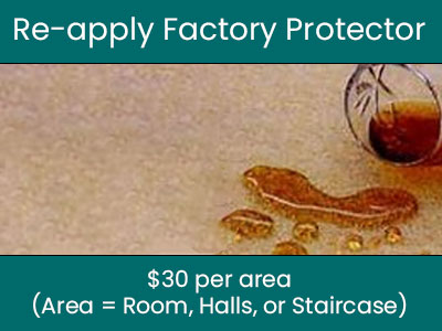 reapply protector coupon